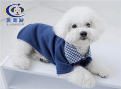 北京到天津-宠物空运