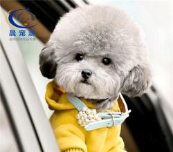 广州到重庆-托运宠物找晨宠游