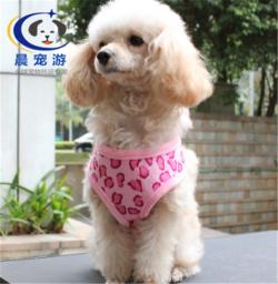 广州到南京-托运宠物找晨宠游