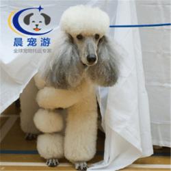 深圳到贵阳|广州晨路物流有限公司