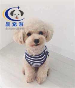<b>温州到南京</b>