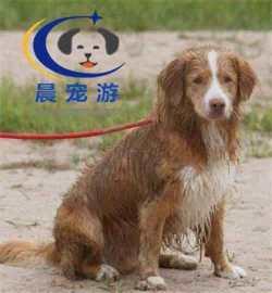 <b>温州到哈尔滨</b>