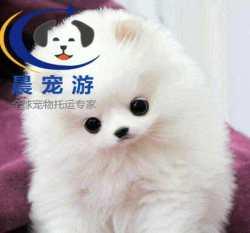 哈尔滨到杭州