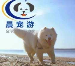 湖北到重庆