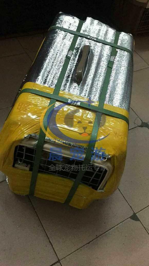 铁路火车宠物如何托运 火车托运宠物流程【最全】